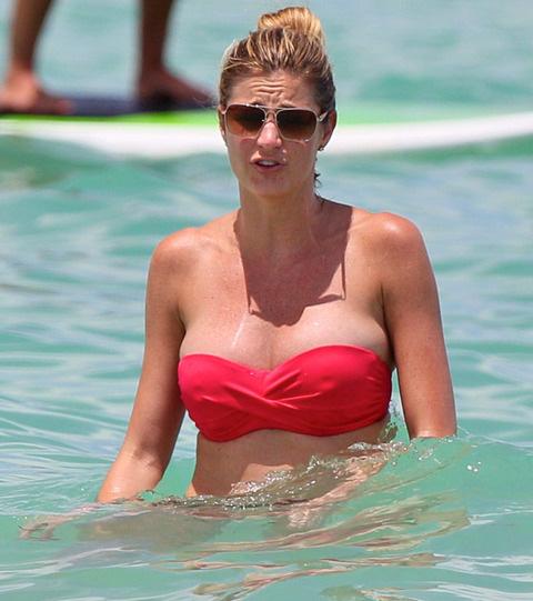 Erin Andrews Nipples 15