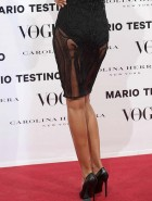 Izabel Goulart see through