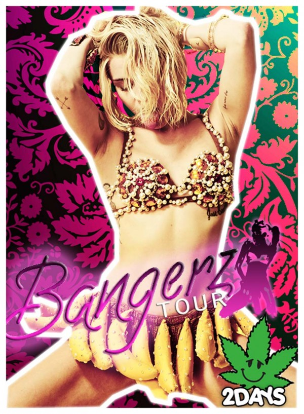 Miley Cyrus Bangerz Tour Book